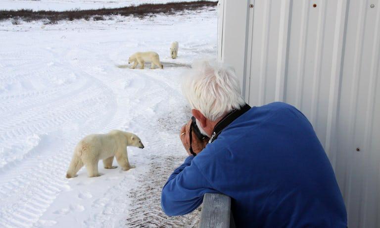 Churchill Polar Bear Adventure: Tundra & Town