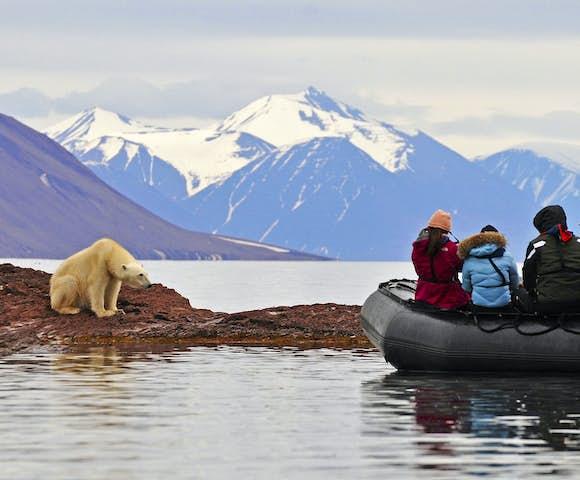 Polar Bear Tours