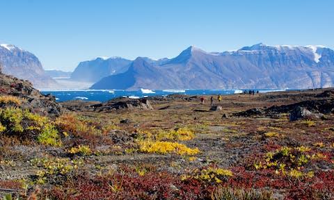 Greenland-tundra