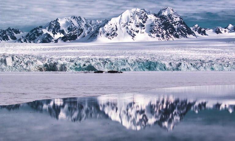 Arctic Journey: Svalbard, Greenland & Iceland