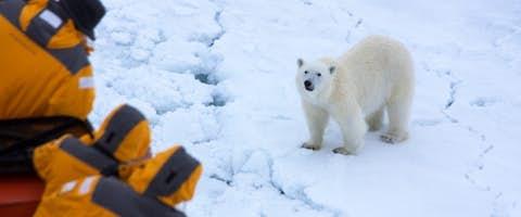 Luxury Highlights of Svalbard