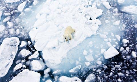 Spitsbergen & Longyearbyen